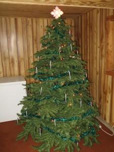 IMG_0898 - Christmas Tree